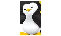 software pingwin